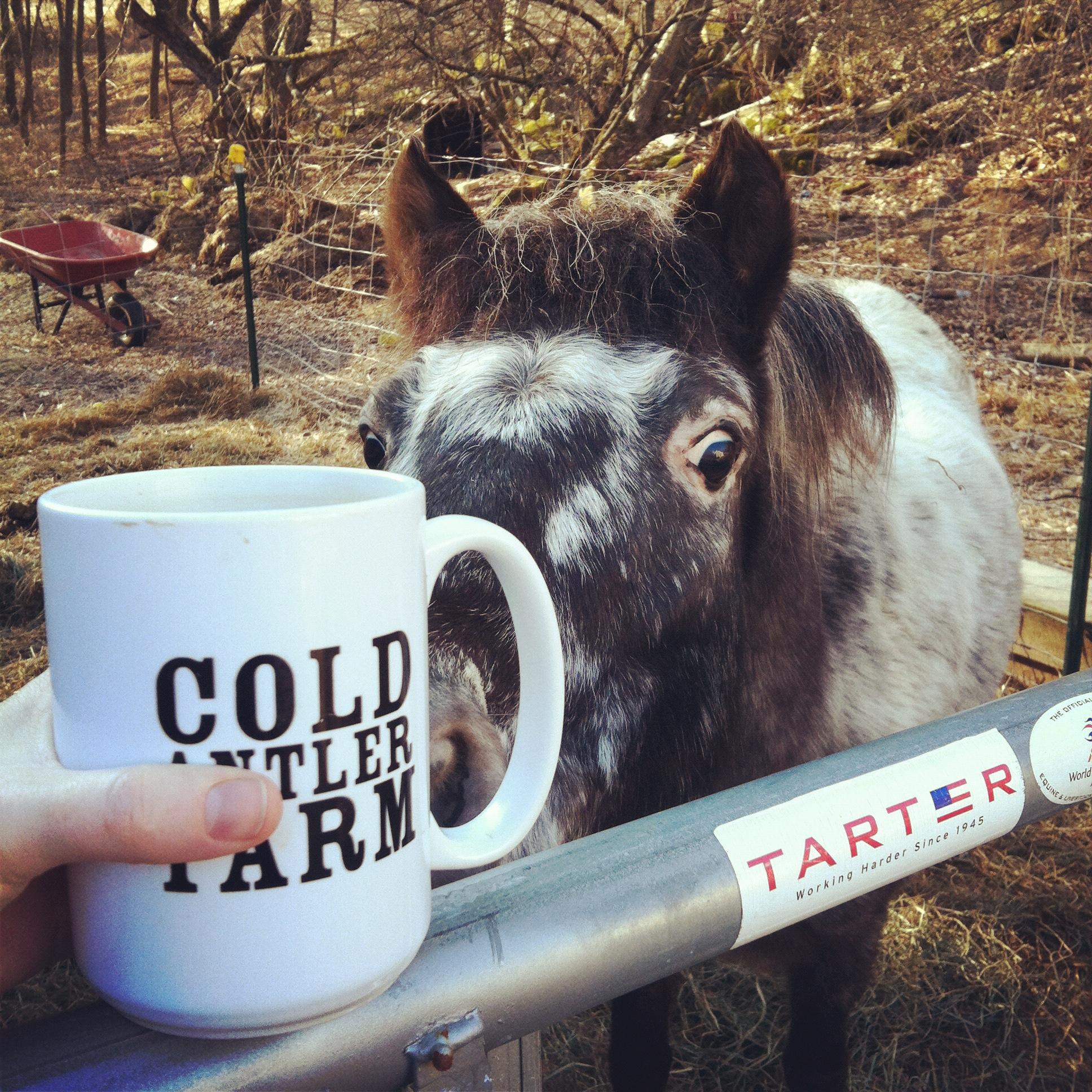 coffeeaddict.JPG