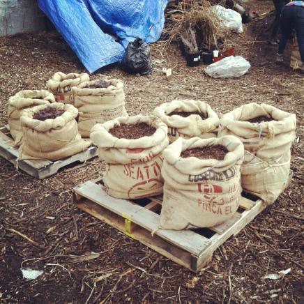 coffeesackplanters.jpeg